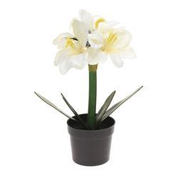 Kwiat sztuczny Led Biały Amarylis