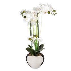 Orchidea w srebrnej doniczce 53 cm