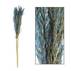 Trawa pampasowa ciemno niebieska 80 cm