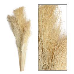 Liście palmy egzotycznej 30-55 cm 3 szt