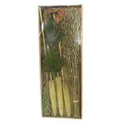 Susz dekoracyjny egzotyczny zieleń mchu